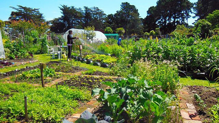 Small Food Systems November Module