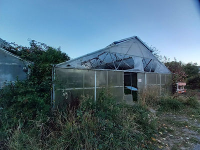 Front of polytunnels.jpg