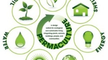 Permaculture Philosophy, Design and Patterns - Module 1