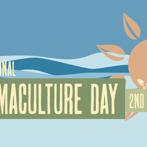 International Permaculture Day in Christchurch