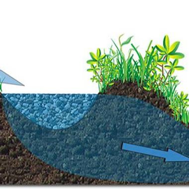 Water & Soil - Module 2