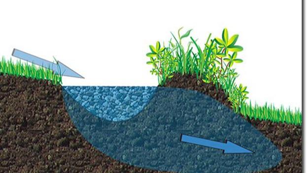 Soil & Water- Module 2