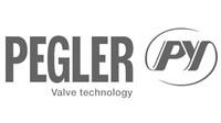 ashworth-pegler-logo.jpg