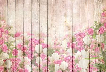 tulips-2112149.jpg