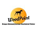 WoodPoint German Shorthaired Pointer Braque Allemand