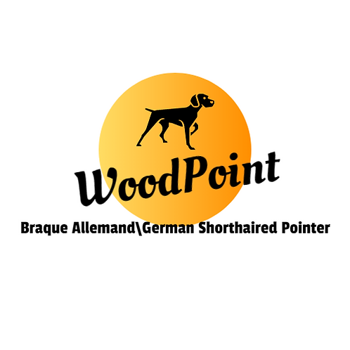 WoodPointKennel