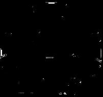 מאידו-לוגו-2.png