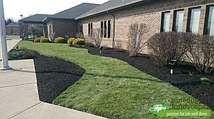Professional landscaping