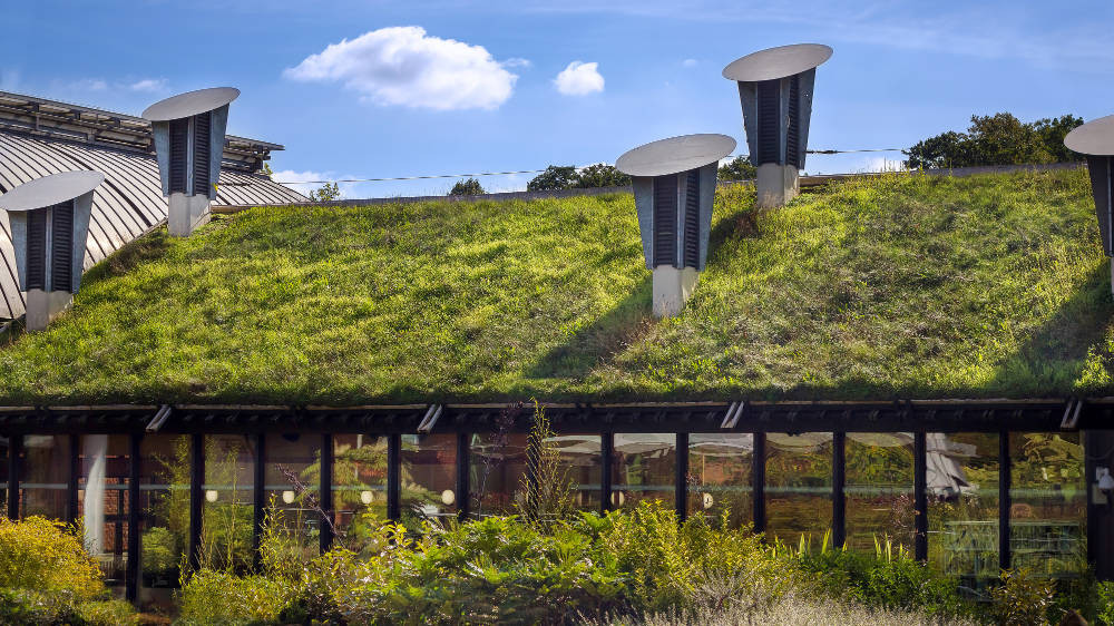 example of a sustainable building showing a wall of windows and a grass roof. In the foreground is soft landscaping with many green plants