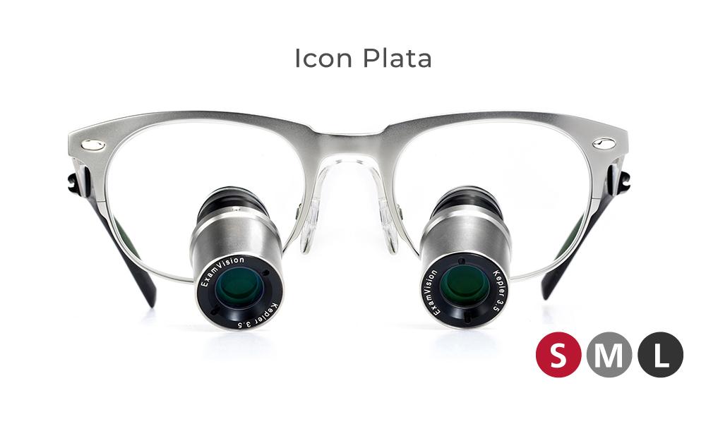 icon_plata