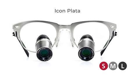 icon_plata.jpg