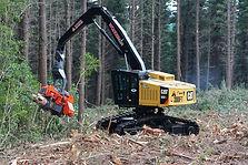 mechanical tree feller