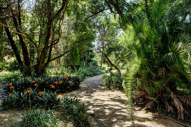 Camden Park House garden 1820 Mt Annan Mt Gilead Macarthur family St Johns