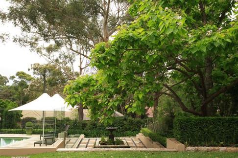 Distinctive Gardens Killara03.JPG