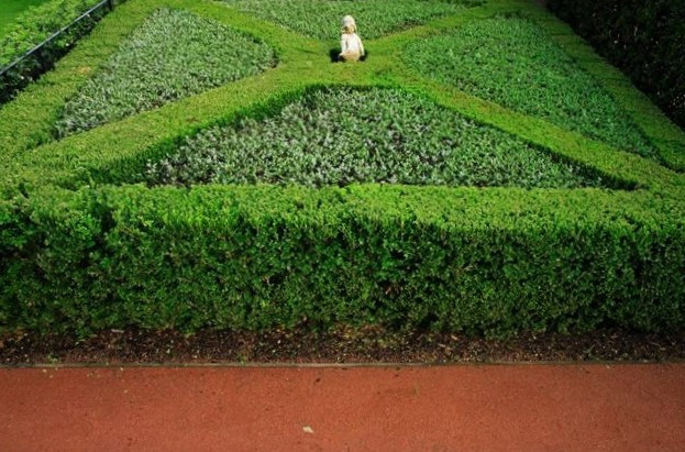 Distinctive Gardens14.JPG