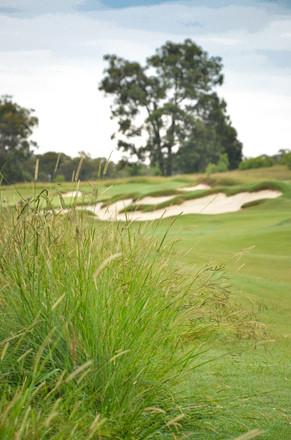 Bingara Gorge Golf-4.jpg