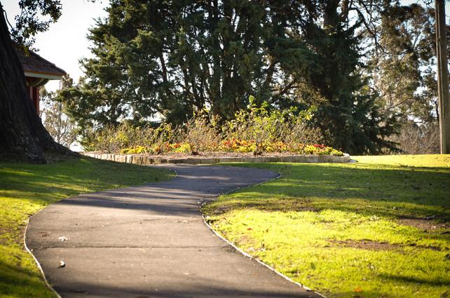 macarthur park-3.jpg