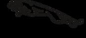 jaguar-logo.384822db.png