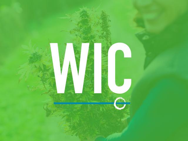 Women In Cannabis Study