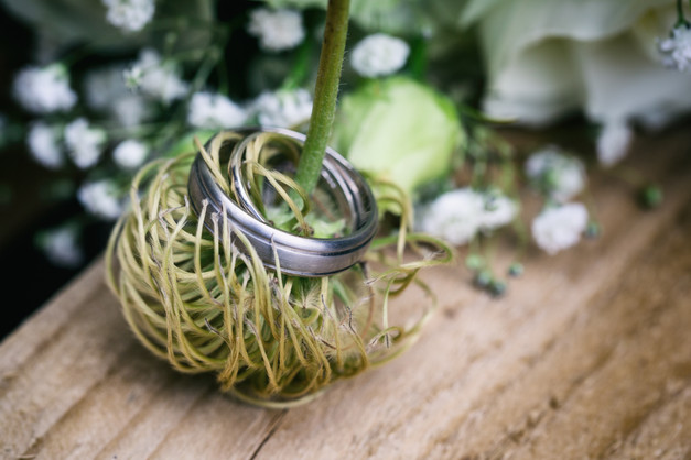 Wedding rings pictured on a flower stem.