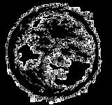 NutriNourish Logo