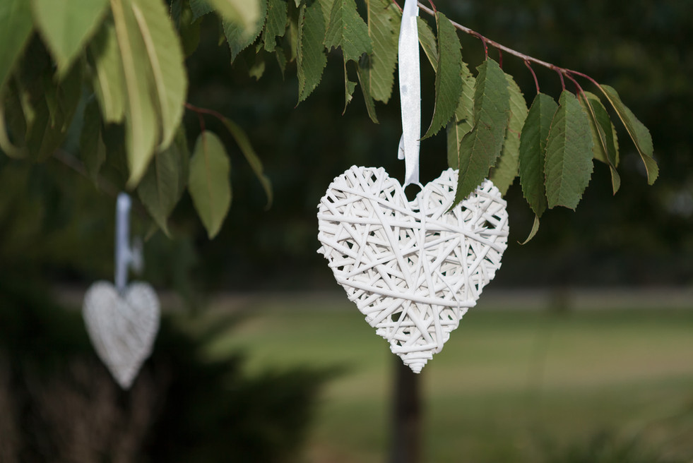 Love hearts hanging from a tree.