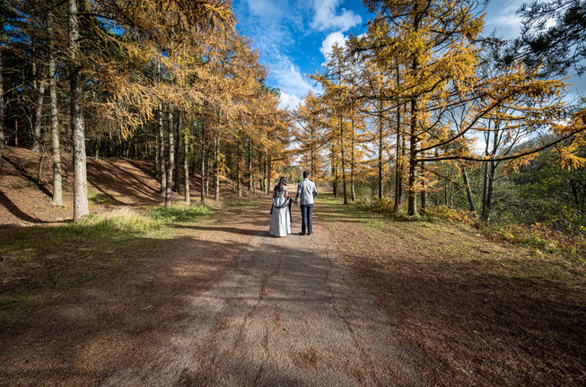 Engagement Shoot at Irchester Country Park.