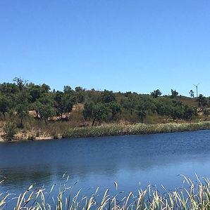 Barranco do Vale_Ilustra 2.jpg