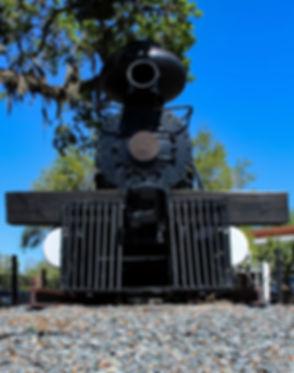 Train 4mp portrait.jpg