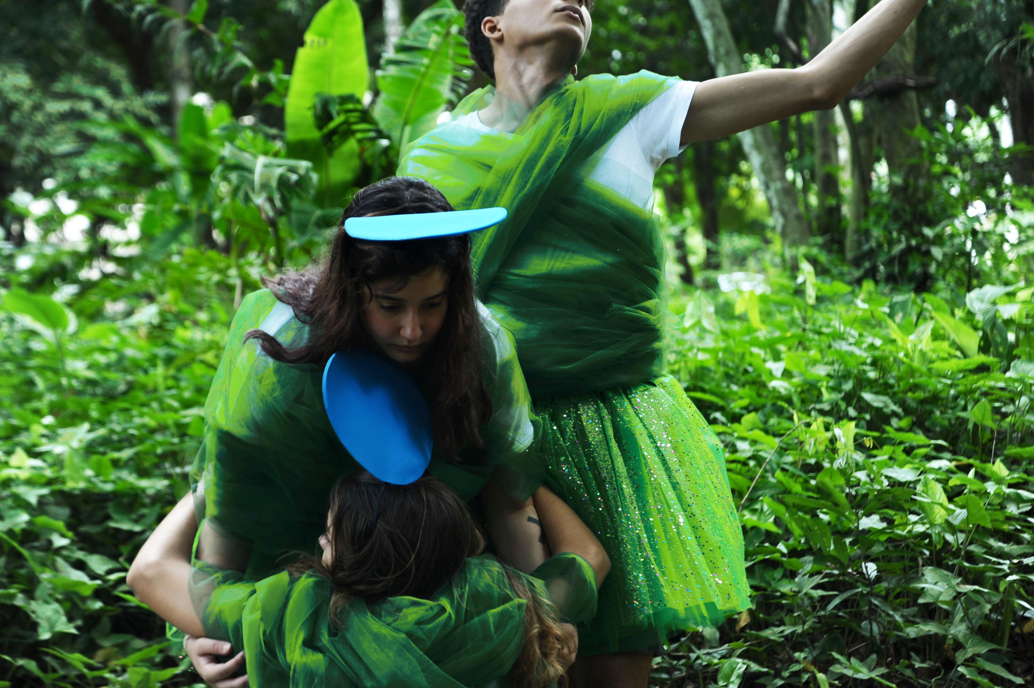 A indiferença do verde e a serenidade do azul