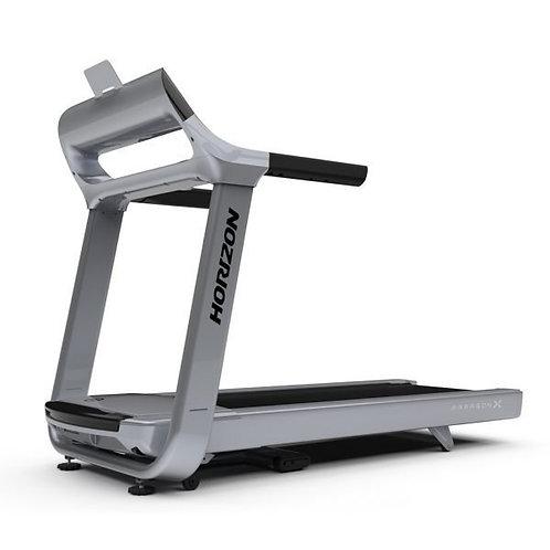 Treadmill Run Paragon X