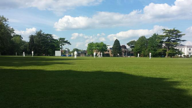OLCC vs The Cricket Society