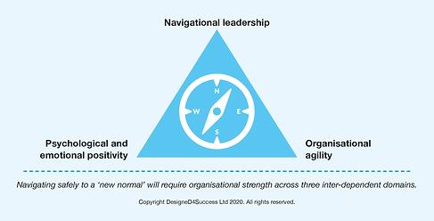 Navigating a new normal domains.png