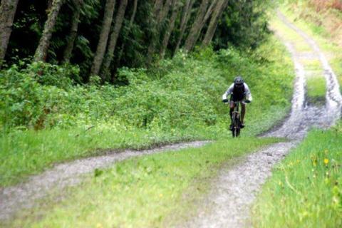 Stottlemeyer 30/60 Mountain Bike Race on August 1st is postponed to 2021