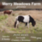 Merry Meadows Farm.jpg