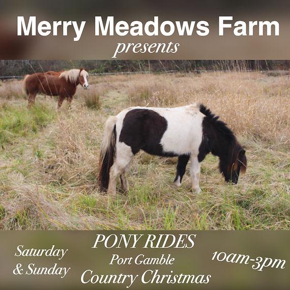 Merry Meadows Farm.jpg