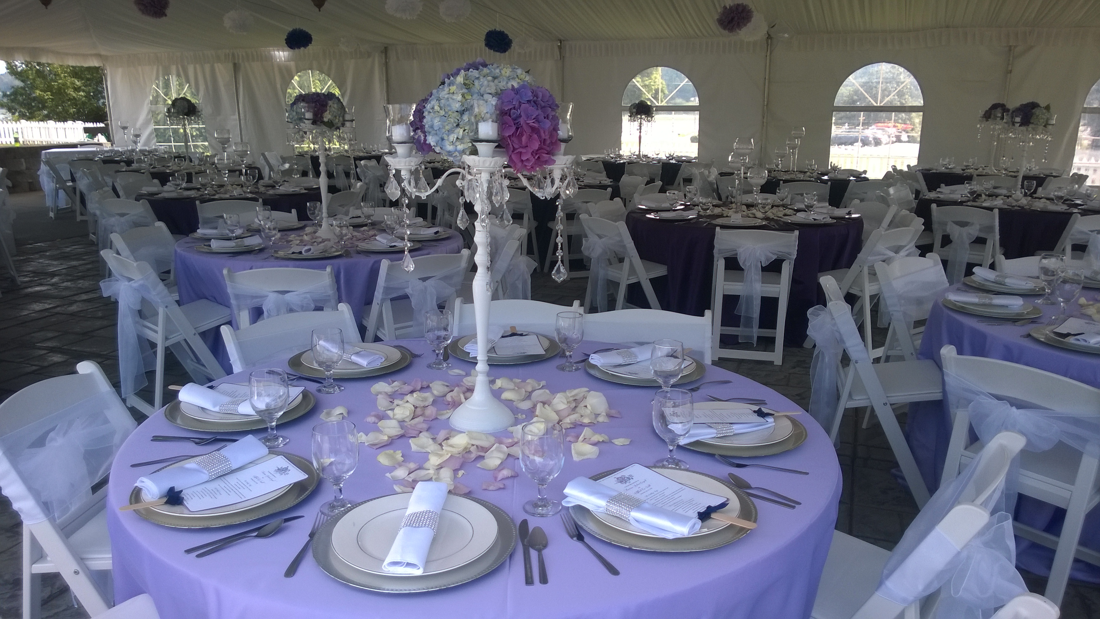 Great Wedding Set Up Summer 2014