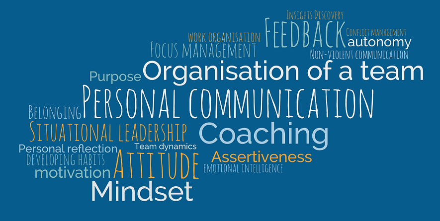 leadership skills.png