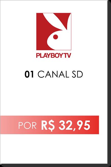 streaming-foz-do-iguacu-playboy.png