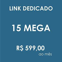 LINK DEDICADO 15 MEGA.jpg