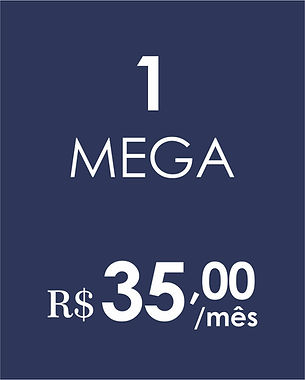 1 MEGA COMBO.jpg