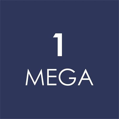 INTERNET 1 MEGA
