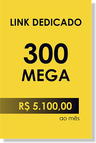 internet-link-dedicado-300-mega.png