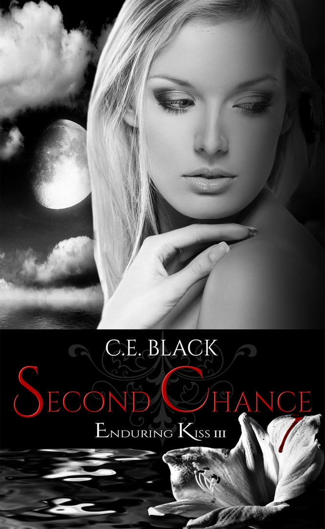 Second Chance Kindle.jpg