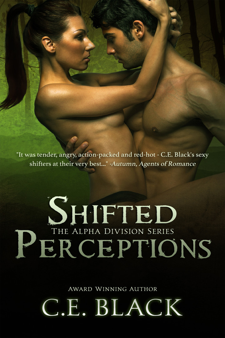 Shifted Perceptions ecover.jpg
