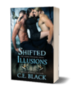 Shifted Illusions - Paperback.png
