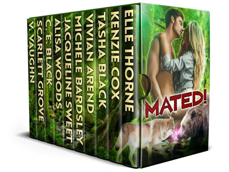 Limited Time Multi-Author Boxed Set!