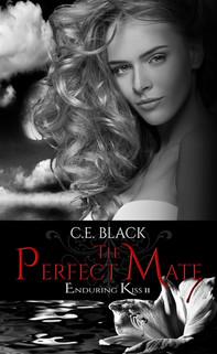 The Perfect Mate Kindle.jpg