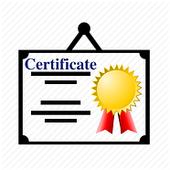 Training Certificate is provided for ISO 9001 implementation training