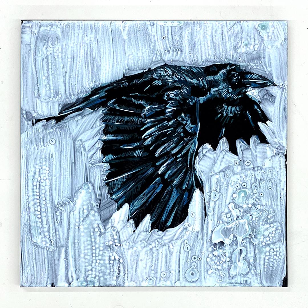 crow white
